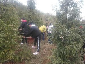 泸州高中2018级学生户外实践教育活动圆满结束(二)